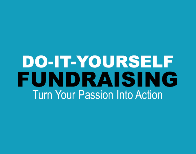 Do It Your self fundraising lgihter