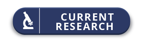 Link to Current Research Page