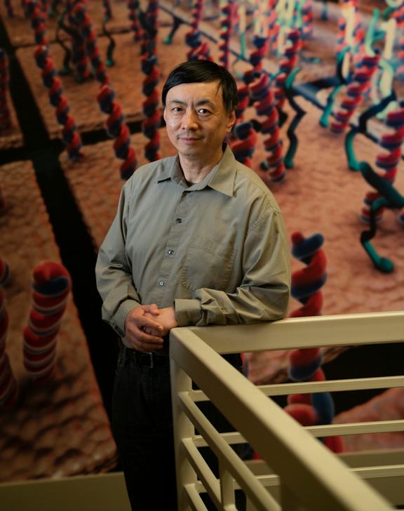Wenzhong Xiao, PhD