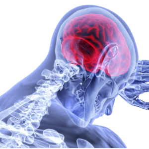 HSE Study inflammation Brain tissue damage